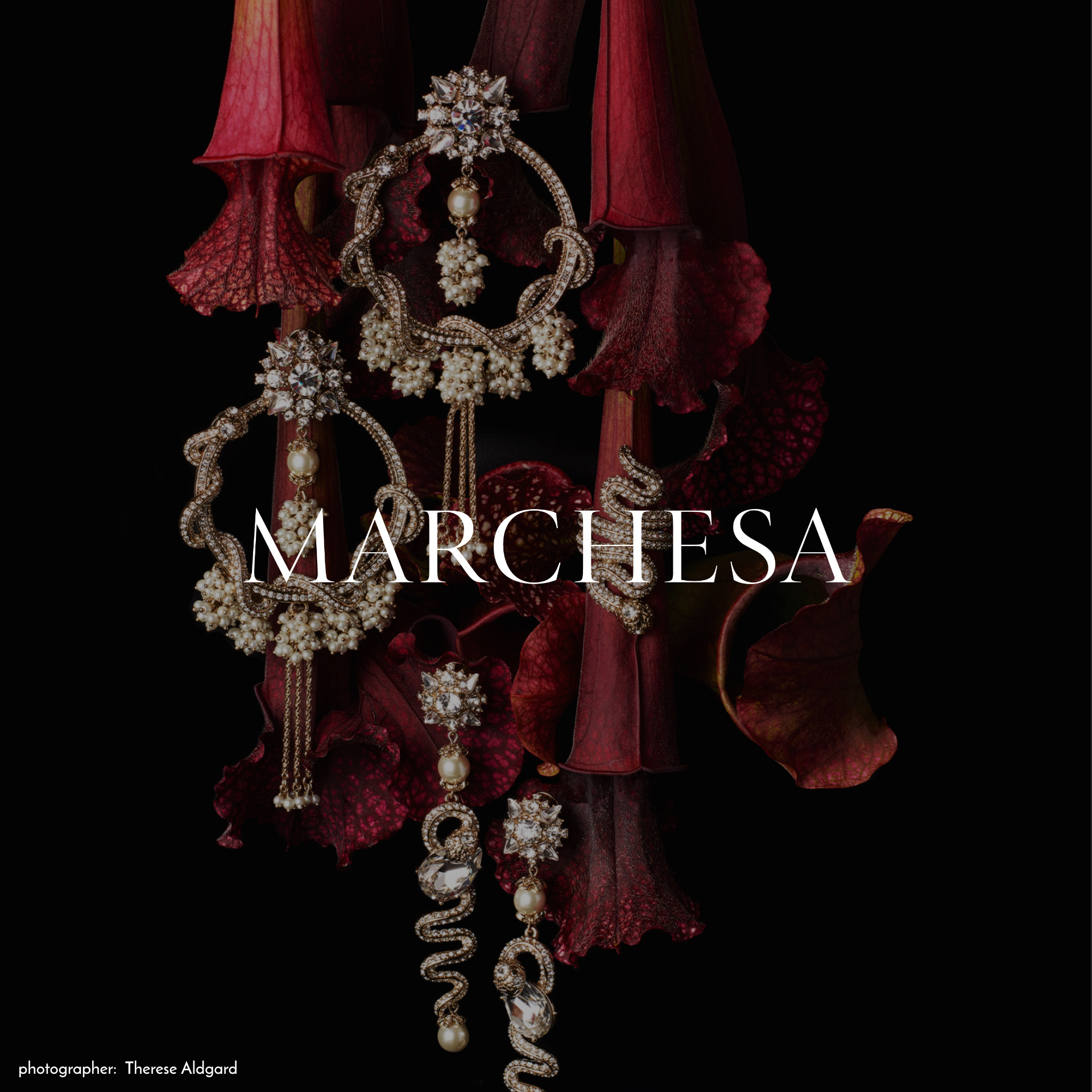 Brand logo of Marchesa