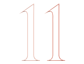 The number 11